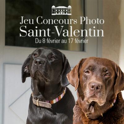 Concours Photos • Saint-Valentin