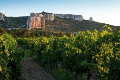 Les plus beaux vignobles de France